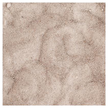 Sable bio organique Coeck 0-1mm 25kg 40 sacs + palettes 3004837