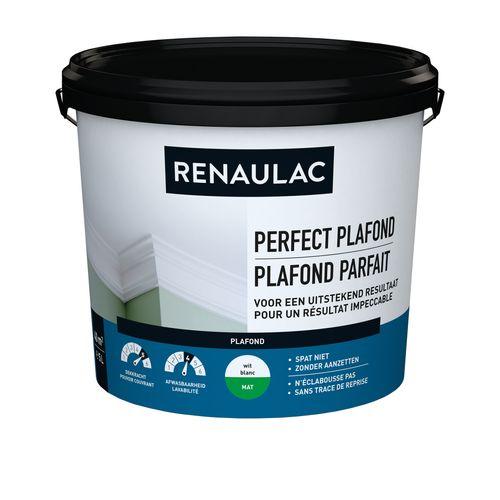 Renaulac peinture plafond Plafond Parfait mat blanc 5L