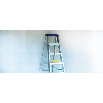 Renaulac voorstrijk Meerdere Ondergronden wit 2,5L