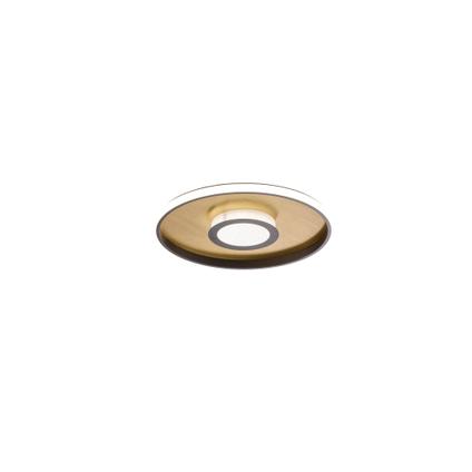 Fischer & Honsel plafondlamp Bug goud rond 27W