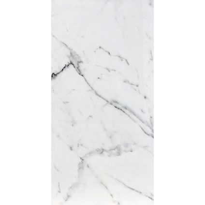 Vloertegel Calacatta Glossy wit 60x120cm
