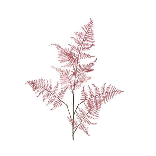 Branche Asperges rouge 85cm