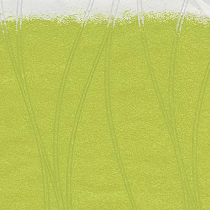 Papier peint intissé A.S Création Meistervlies 245014 à peindre