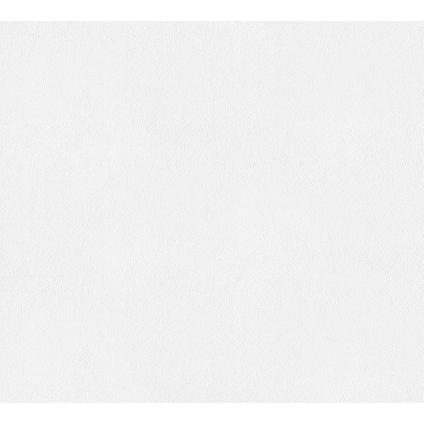 Papier peint intissé A.S Création Meistervlies 929310 à peindre