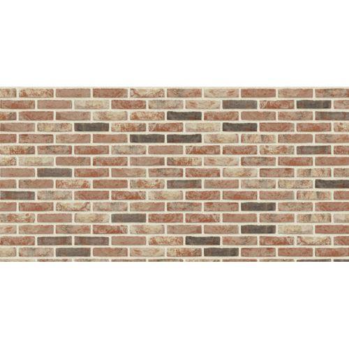 Brique de façade Coeck mod50 Neo Baroque 190x90x50mm 14,5m² 1000 pcs + palette 3004837