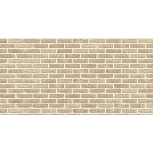 Brique de façade Coeck Anderlecht Mod 50 190x90x50mm 14,5m² 1000 pcs + palette 3004837