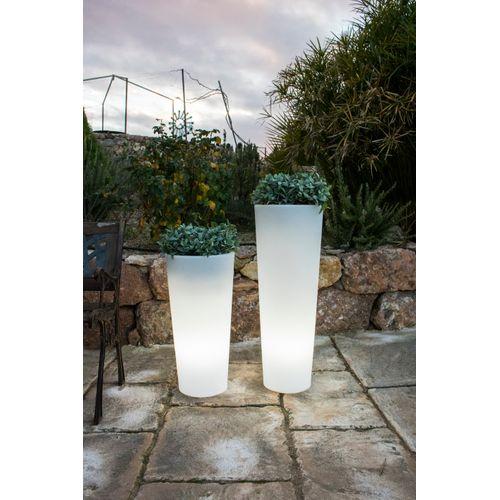 NewGarden bac à fleurs lumineux Ficus 80 lumière blanche