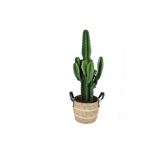 Cowboycactus (Euphorbia Ingens) 80cm met plantenpot lichte natuur tint