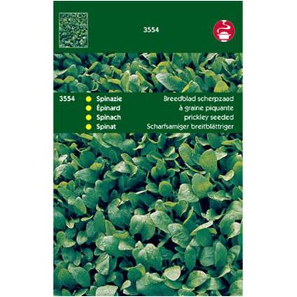 Zaden spinazie breedblad zomer
