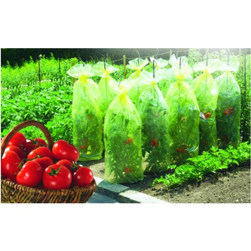 Housse de croissance 'Tomatotube' 10 x 0,6 m