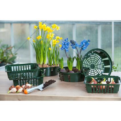 Bac à bulbes Nature Ø 26 cm – 3 pcs