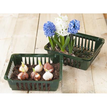 Bac à bulbes Nature 25 x 21 cm – 3 pcs