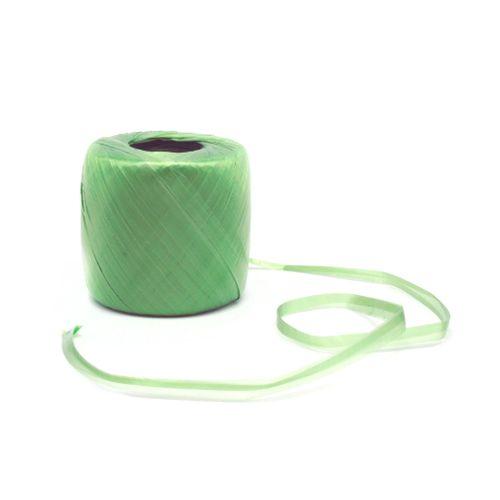 Bobine de raphia synthétique vert - 100 g - 400 m