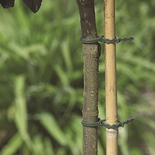 Plastilien Nature 11,5 cm – 70 pcs