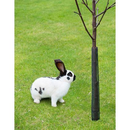 Protège troncs Nature – 4 pcs