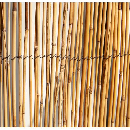 Central Park rietmat scherm rietstengel 1 x 5 m