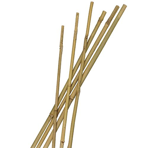 Tuteur bambou Nature naturel 210 cm – 3 pcs