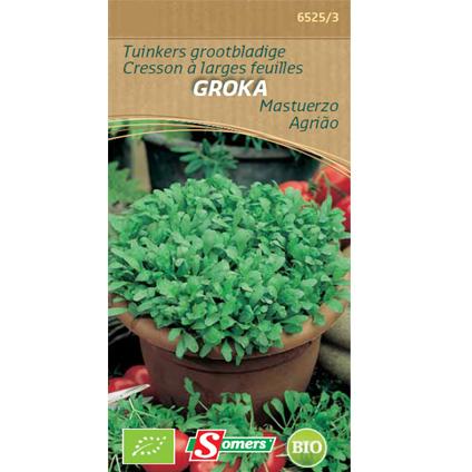 Somers zaad pakket tuinkers grootbladige 'Groka'