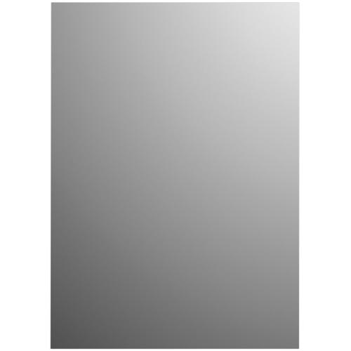 Plieger spiegel Basic rechthoek 120x30cm zilver