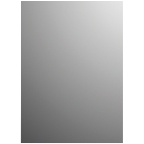 Plieger spiegel Basic rechthoek 120x45cm zilver