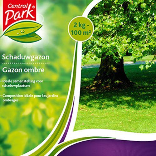 Semences de gazon Central Park 'Ombre' 2 kg