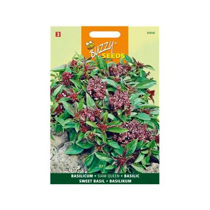 Buzzy seeds zaden basilicum siam queen