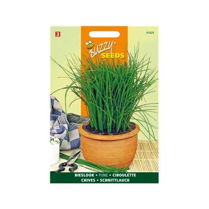 Buzzy seeds zaden fijne bieslook