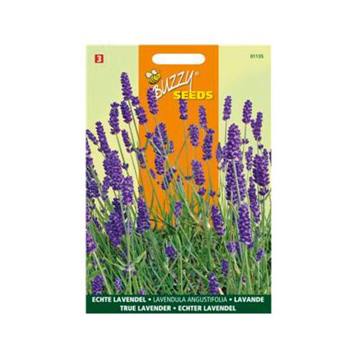 Buzzy seeds zaden echte lavendel