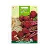 Buzzy seeds zaden biet of kroot kogel 2