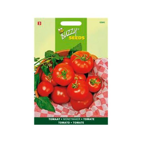 Buzzy seeds zaden tomaat moneymaker
