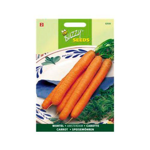 Buzzy seeds zaden wortel amsterdamse bak 2