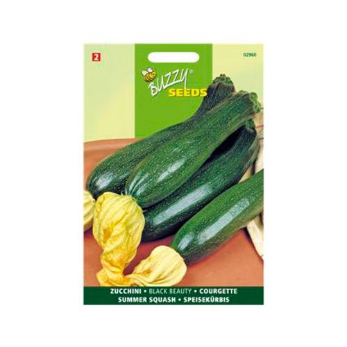 Buzzy seeds zaden courgette black beauty