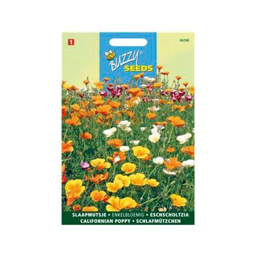 Buzzy seeds zaden slaapmutsje enkelbloemig