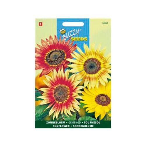 Buzzy seeds zaden miniatuurzonnebloem gemengd