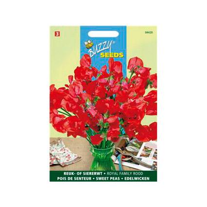 Buzzy seeds zaden reuk- of siererwt royal family rood