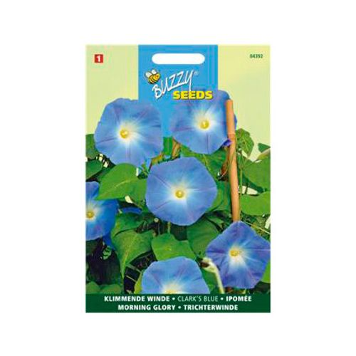 Buzzy seeds zaden klimmende winde clark's blue