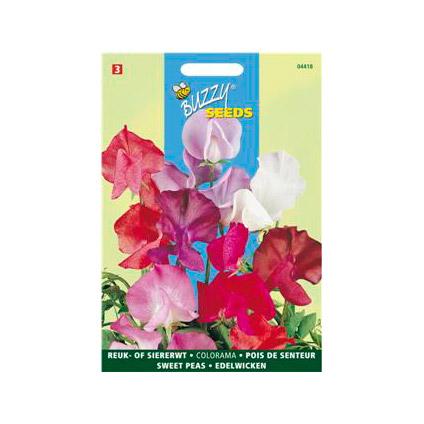 Buzzy seeds zaden reuk- of siererwt colorama