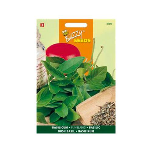 Buzzy seeds zaden basilicum fijnbladig