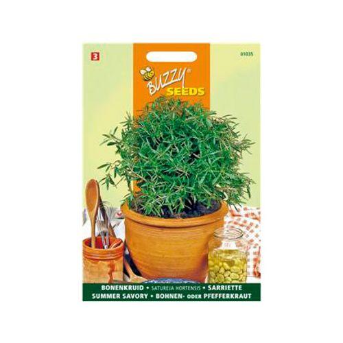 Buzzy seeds zaden bonenkruid eenjarig