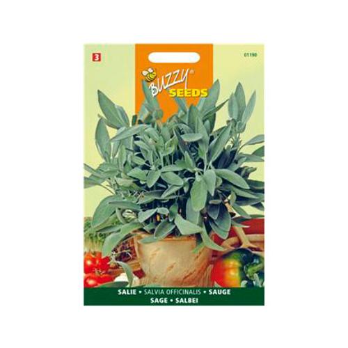 Buzzy seeds zaden salie