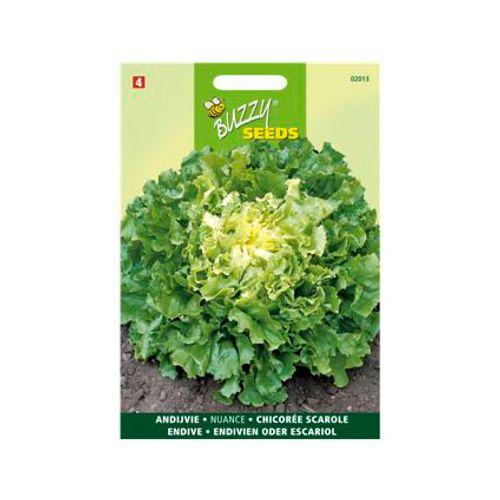Buzzy seeds zaden andijvie nuance