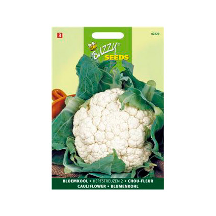 Buzzy seeds zaden bloemkool herfstreuzen 2