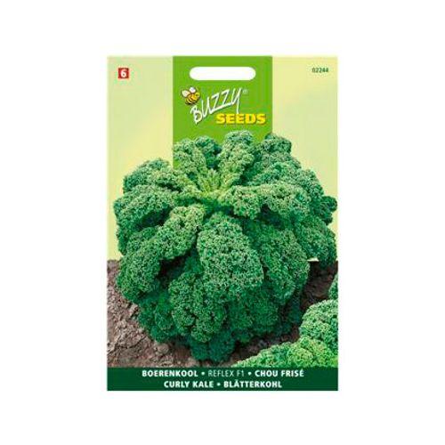 Buzzy seeds zaden boerenkool reflex f1
