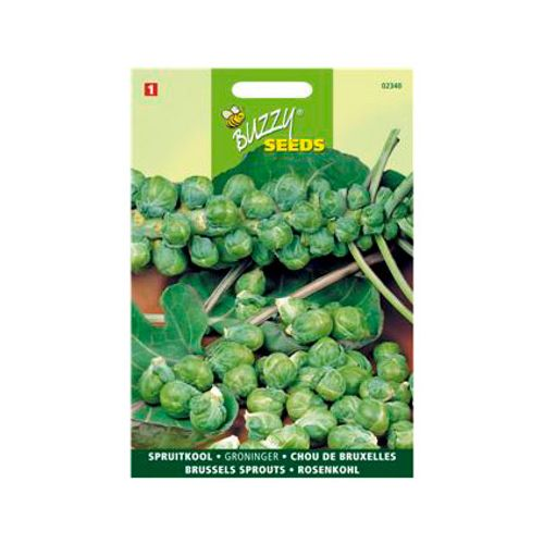 Buzzy seeds zaden spruitkool groninger