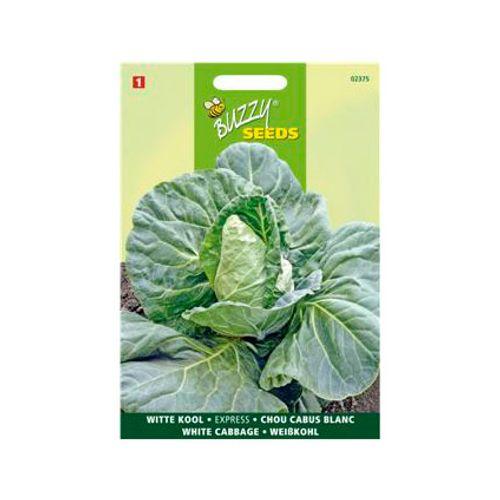 Buzzy seeds zaden witte kool express vroege spitse