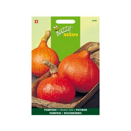 Buzzy seeds zaden pompoen oranje zon