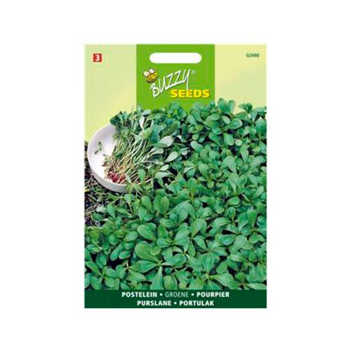 Buzzy seeds zaden postelein groene
