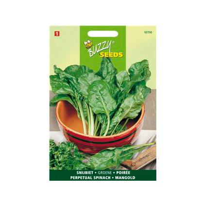 Buzzy seeds zaden snijbiet groene gewone