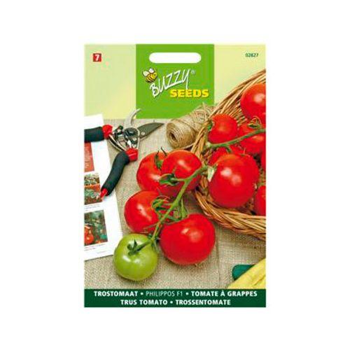 Buzzy seeds zaden trostomaat philippos f1