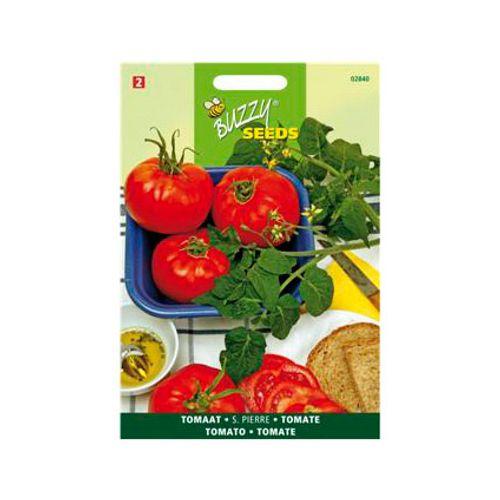 Buzzy seeds zaden tomaat st